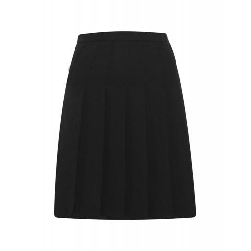 Designer Pleated Skirt